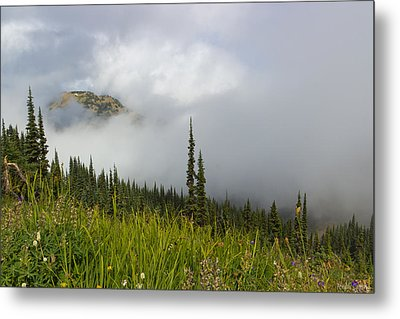 Little Slice Of Heaven Metal Print by Heidi Smith
