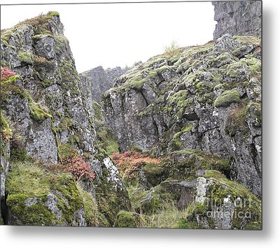 Metal Print featuring the photograph Living Stone   by Louise Peardon