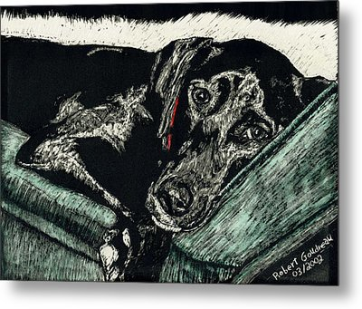 Lizzie The Dog Metal Print by Robert Goudreau