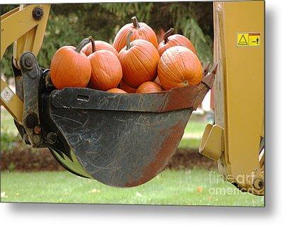Load Of Pumpkins Metal Print by Ginger Harris