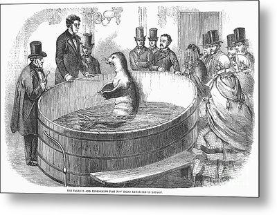 London: Talking Fish, 1859 Metal Print by Granger