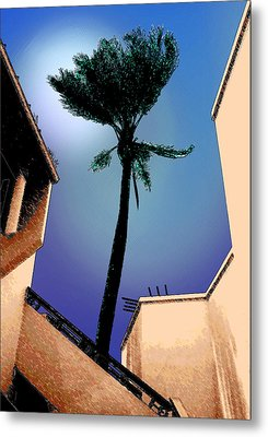Lone Palm Metal Print by Ginny Schmidt
