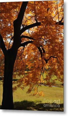 Metal Print featuring the photograph Lone Tree by Anne Raczkowski