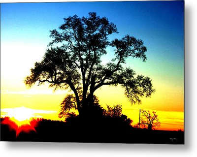 Metal Print featuring the photograph Lone Tree At Sunrise by George Bostian