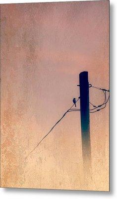 Lonely Soldier Metal Print by Susan Bordelon