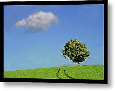 Lonely Tree Against Blue Sky Metal Print by Ernie Watchorn