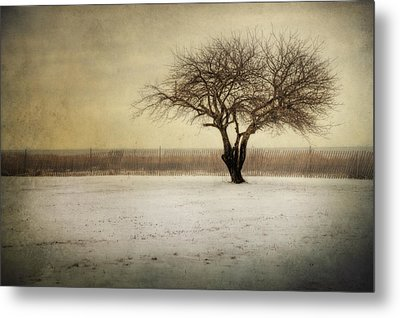 Lonely Tree Metal Print by Yelena Rozov