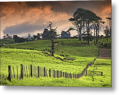 Long Bay Fields Metal Print by Mark Meredith