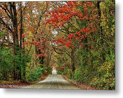 Metal Print featuring the photograph Long Bumpy Dirt Road by Rachel Cohen
