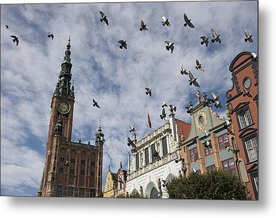 Long Market With Pigeons, Town Hall Metal Print by Keenpress