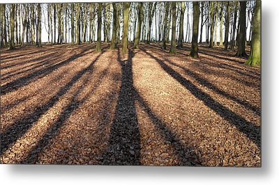 Long Shadows Metal Print by Michael Standen Smith
