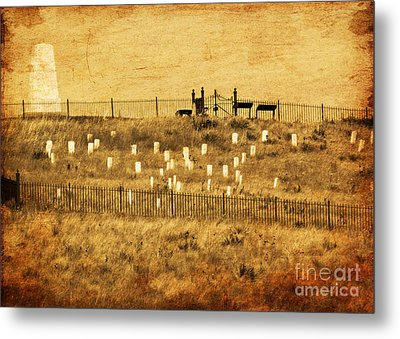 Looking At History Metal Print by Terrie Taylor