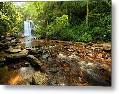 Metal Print featuring the photograph Looking Glass Falls by Doug McPherson