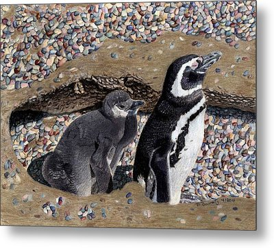Looking Out For You - Penguins Metal Print