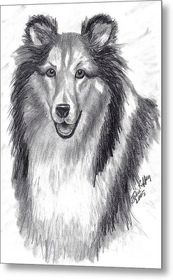 Metal Print featuring the drawing Looks Like Lassie by Julie Brugh Riffey