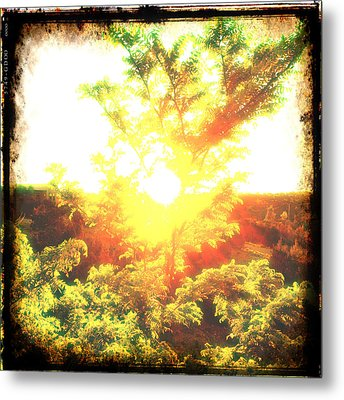 Metal Print featuring the photograph Los Alamos Sunset by Paul Cutright