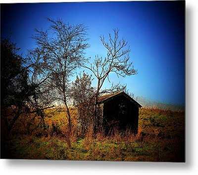 Lost Shed Metal Print by Joyce Kimble Smith