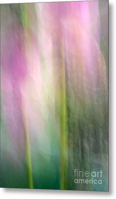 Lotus Flower Impression Metal Print by Catherine Lau