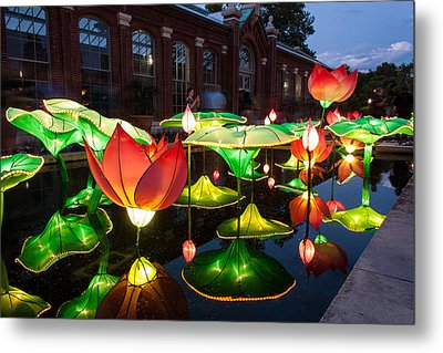Lotus Flower Metal Print by Semmick Photo