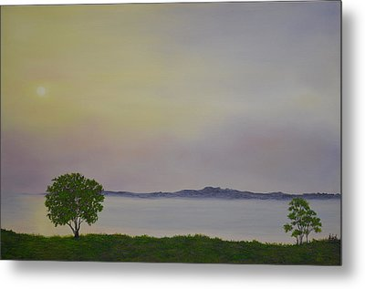 Lough Neagh N.ireland Metal Print