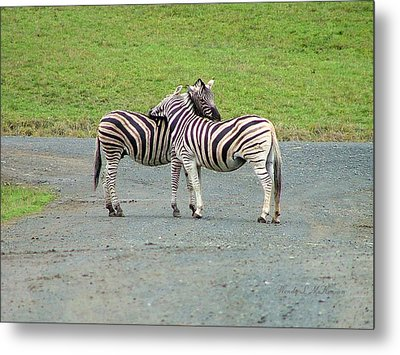 Lovin' Stripes Metal Print by Wendy McKennon