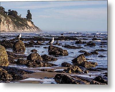 Low Tide Metal Print by Marta Cavazos-Hernandez