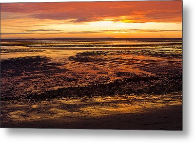 Metal Print featuring the photograph Low Tide by Michael Friedman