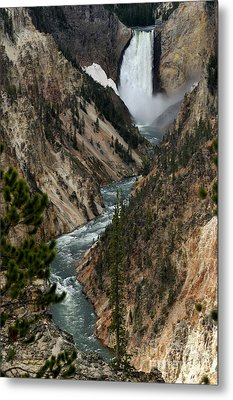 Lower Falls And Yellowstone River Metal Print by Living Color Photography Lorraine Lynch