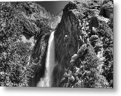 Lower Yosemite Falls Bw Metal Print by Bruce Friedman