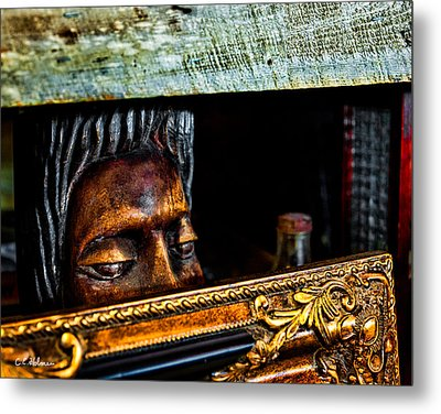 Lurking Metal Print by Christopher Holmes
