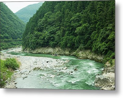 Lush Green Volcanic River Gorge, Kyoto, Japan Metal Print by Ippei Naoi