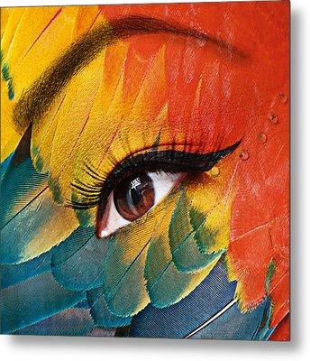 Macaw Metal Print by Yosi Cupano