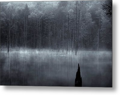 Metal Print featuring the photograph Madame Sherri's Pond II by Tom Singleton