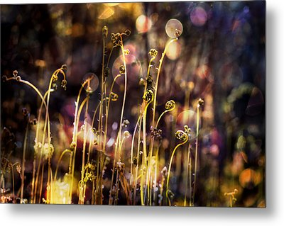Magic Of Spring Metal Print by Michele Cornelius