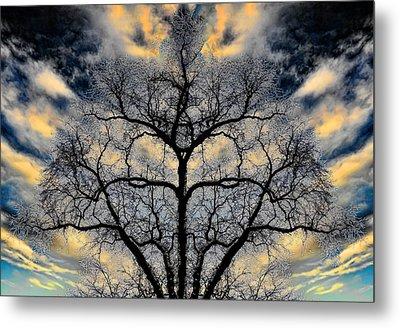 Magical Tree Metal Print by Hakon Soreide