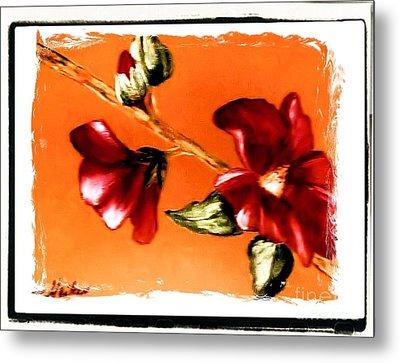 Magnolia Full Bloom Painting Metal Print by Marsha Heiken