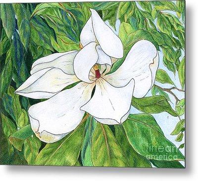 Magnolia Metal Print by Linda Battles