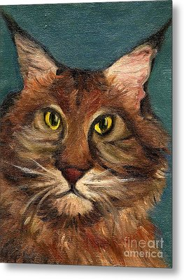 Mainecoon The Cat Metal Print