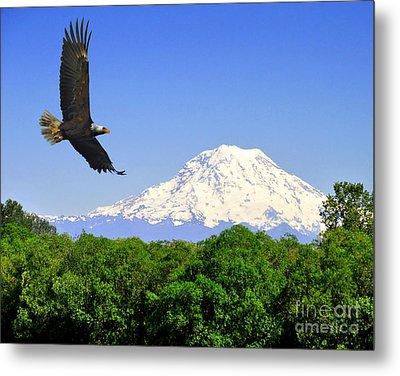 Metal Print featuring the photograph Majesty by Jack Moskovita
