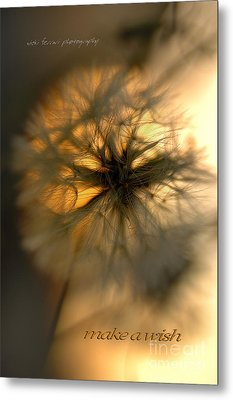 Metal Print featuring the photograph Make A Wish by Vicki Ferrari