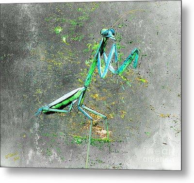 Mantis 1 Metal Print