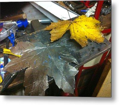 Maple Leaf  Metal Print by Jeremy Pontbriand
