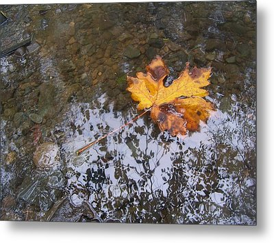 Maple Leaf Reflection 3 Metal Print