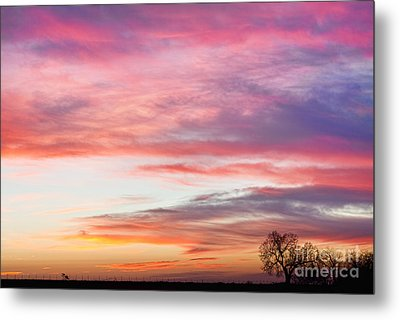 March Countryside Sunrise  Metal Print by James BO  Insogna