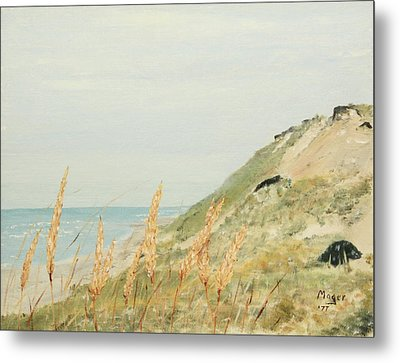 Marconi Beach Metal Print by Alan Mager
