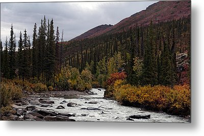 Metal Print featuring the photograph Marion Creek by Gary Rose
