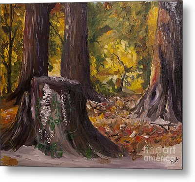 Marr Park Trees Of Fall Metal Print by Art Hill Studios