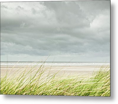 Marram Grass On Beach By Sea Metal Print by Dune Prints by Peter Holloway