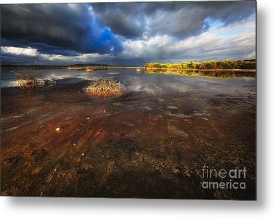 Marsh Landscape Of Cabo Rojo Metal Print by George Oze