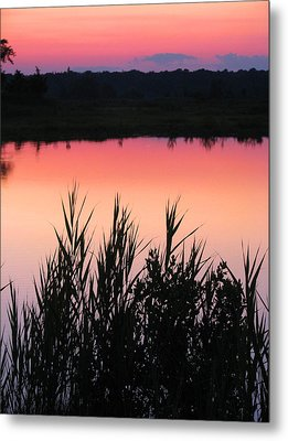 Metal Print featuring the photograph Marsh Sunset by Clara Sue Beym